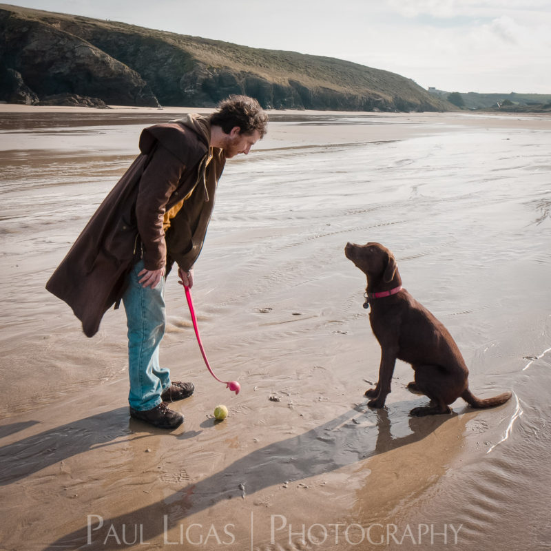 On The Beach, documentary pet photographer photography herefordshire 7404