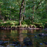 River Teign, Devon, landscapes and nature photographer photography herefordshire 7166