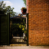 Wall and Garden, Newbury, fine art photographer urban photography herefordshire 0843