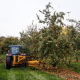 Townend Hop Farm, Herefordshire farming agriculture photographer cider apples harvest photography 4539