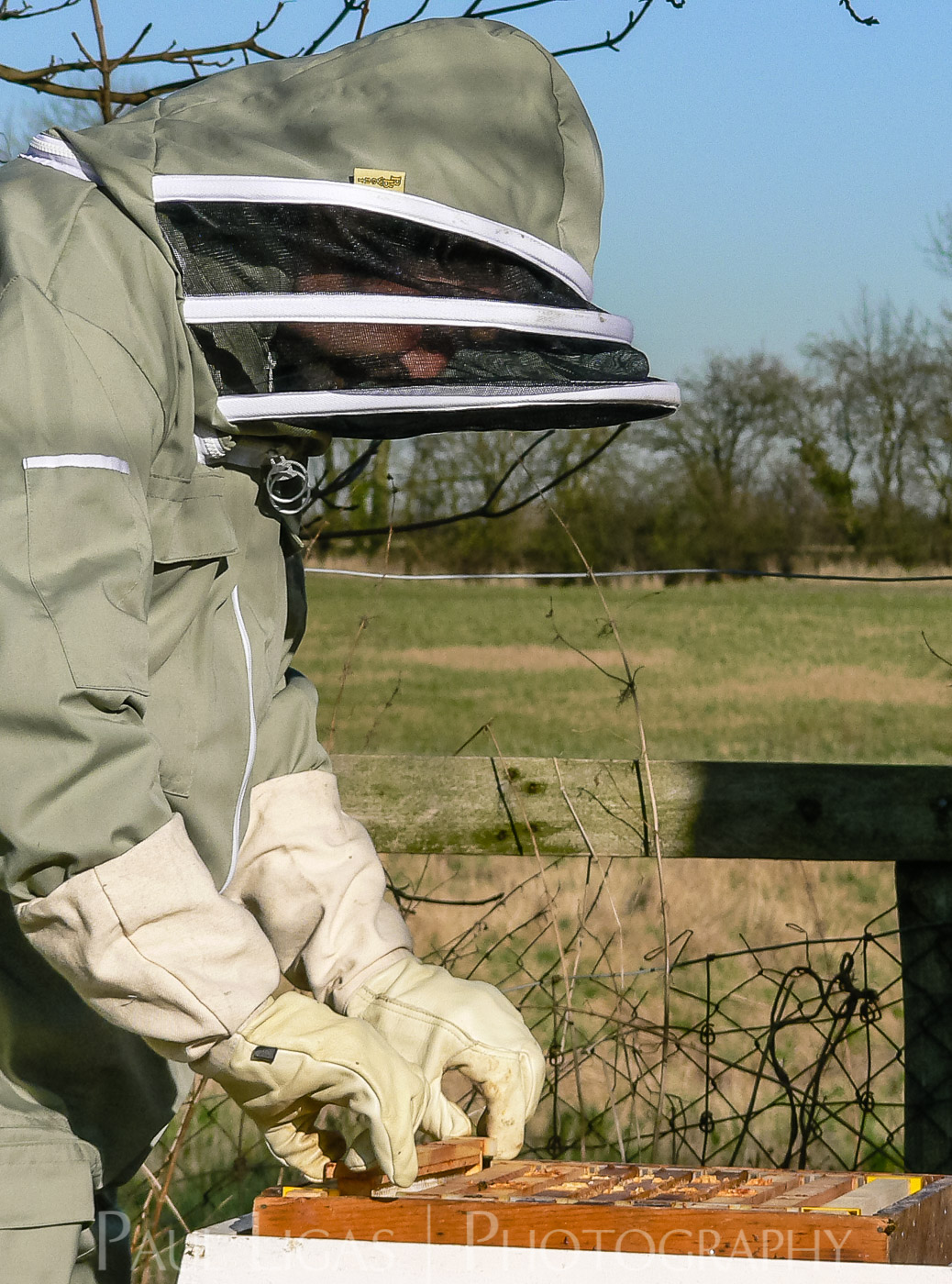 Mill House Farm agriculture photographer photography farming beekeeping herefordshire 0964