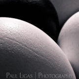Eggs, fine art abstract photographer photography herefordshire 0019