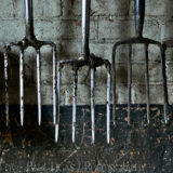 Garden Forks, fine art farming photographer photography herefordshire 0792