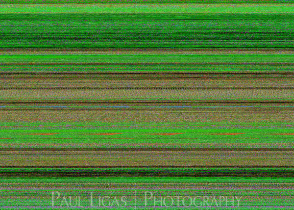 Mobile phone camera error, fine art photographer photography herefordshire