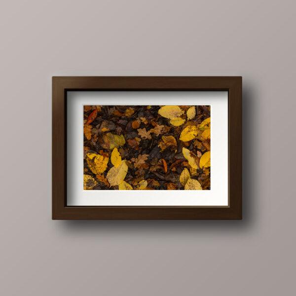 Paul Ligas Photography Print Autumn Leaves mockup