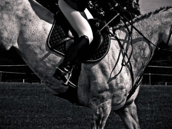 Paul Ligas Photography print Show Jumping – Horse and Rider