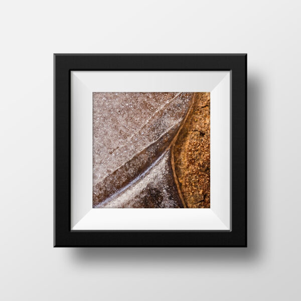 Paul Ligas Photography Print Leaf Frozen in Puddle Macro Mockup