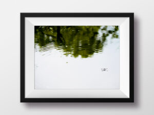 paul ligas photography print pond skater mockup