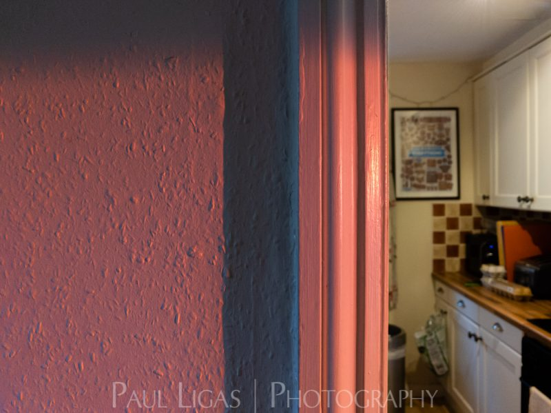 photos from inside a lockdown part 2-Paul Ligas Photography Hereford ledbury-182103