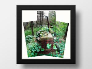 paul ligas photography print abandoned mccormick tractor ontario mockup