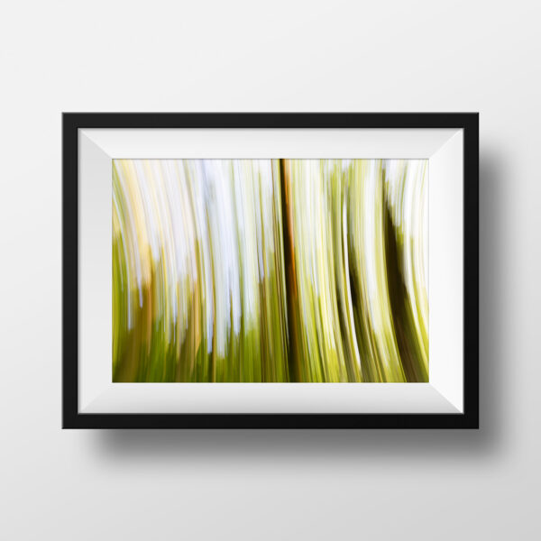 paul ligas photography print cherry tree grove frith wood ledbury herefordshire mockup