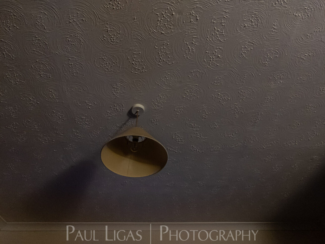 photos from inside a lockdown 2 part 2 paul ligas photography hereford ledbury – 5810